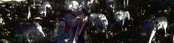 L'image traditionnelle d'un sorceleur risquant sa vie pour le compte d'un clan de chasseurs.
